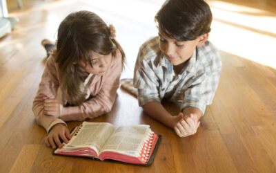 The Top 10 Bibles Just For Kids
